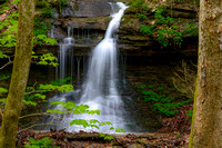 Frozen Head State Park, Tennessee April 2015